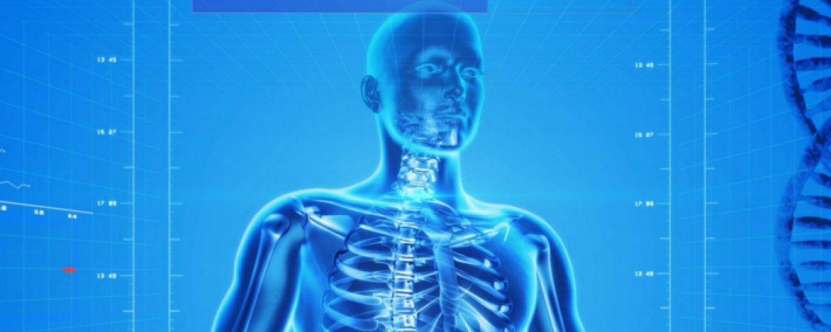 El estudio de la anatomía será digital y en 3D | Cluster Salud ...